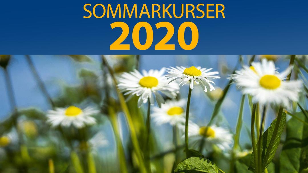 Sommarkurser 2020